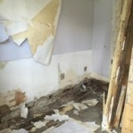 The affected room with Dry Rot in Sheffield