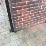 Source of moisture (wall floor angle) Sheffield