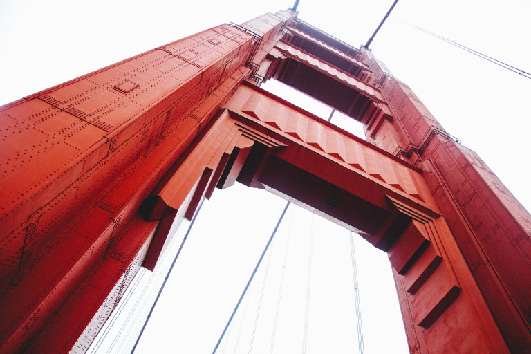 Treating Black Spot Mould Can Be Like Painting The Forth Bridge
